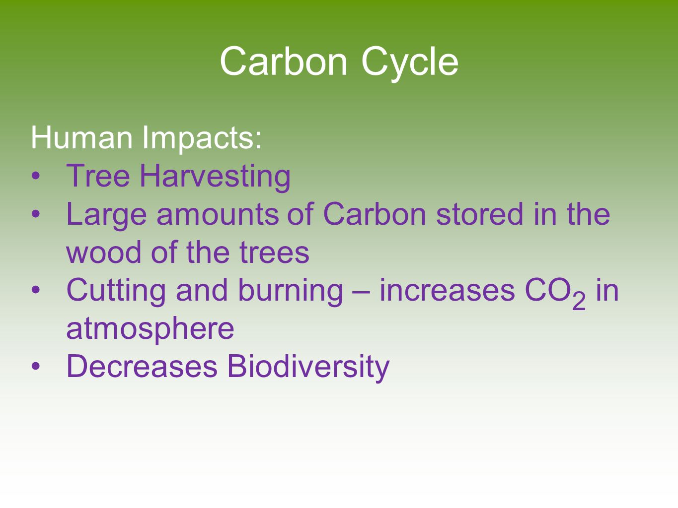 Carbon Cycle Human Impacts: Tree Harvesting