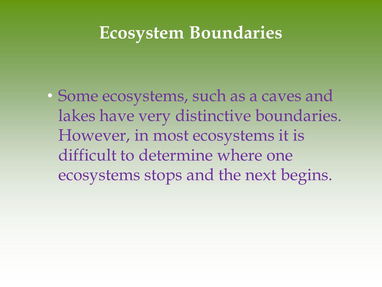 Ecosystem Boundaries