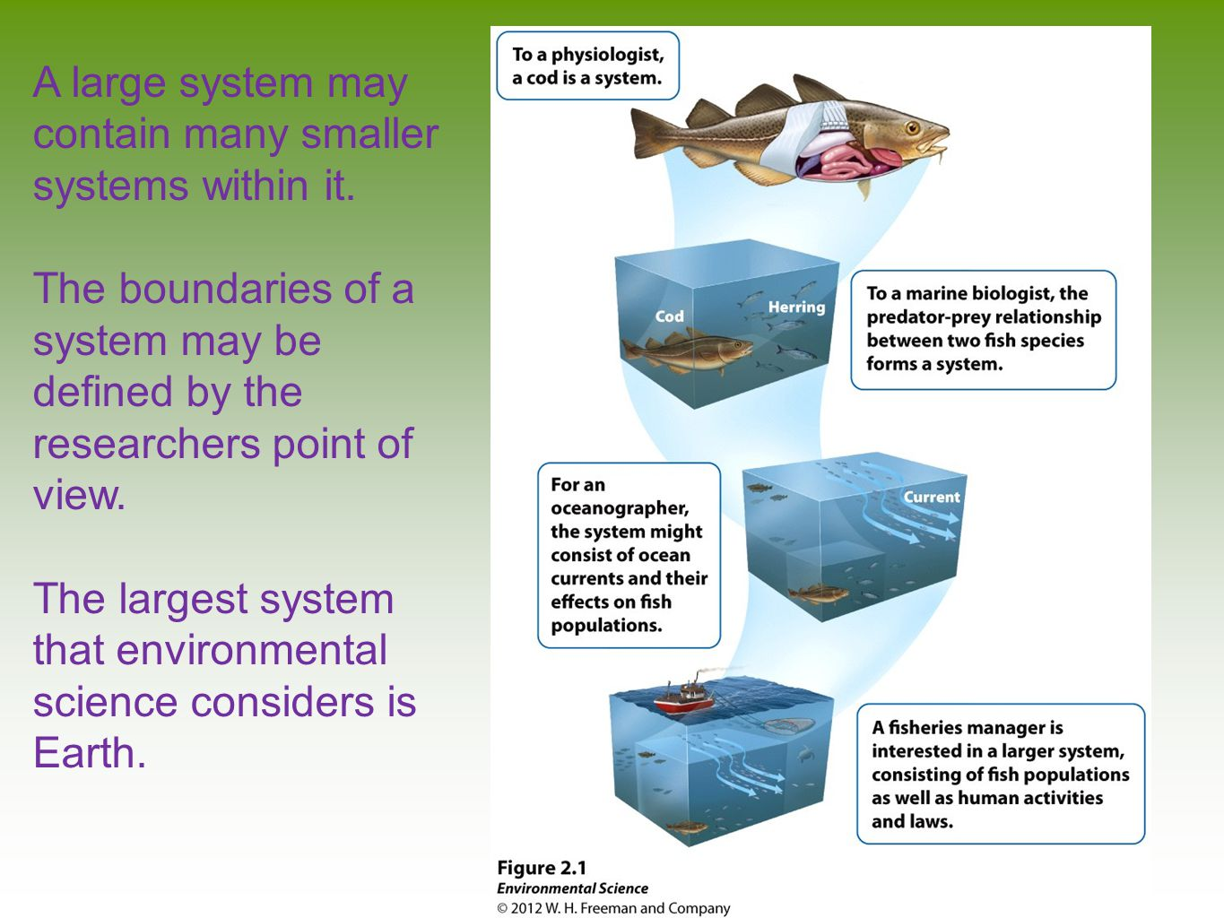 A large system may contain many smaller systems within it.