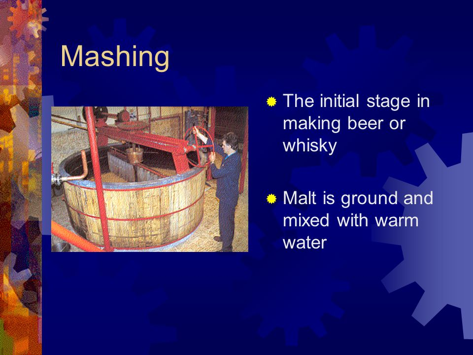 Mashing The initial stage in making beer or whisky
