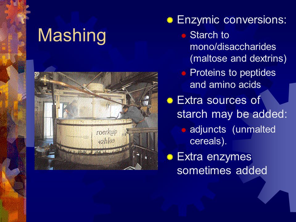 Mashing Enzymic conversions: Extra sources of starch may be added: