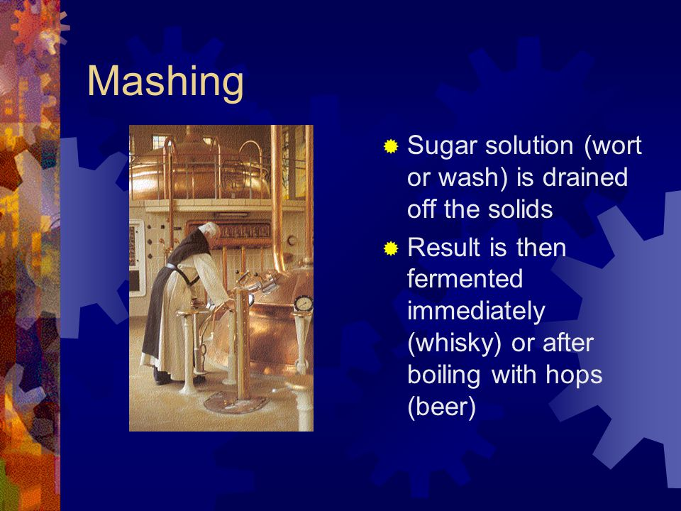 Mashing Sugar solution (wort or wash) is drained off the solids