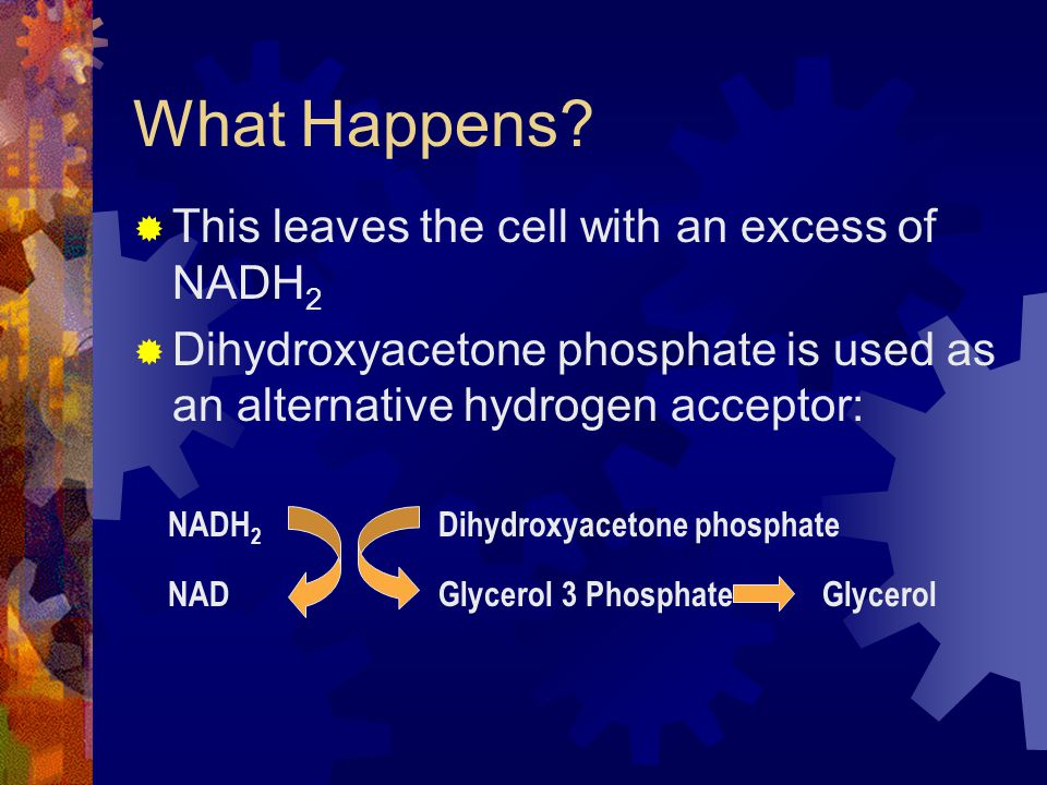 What Happens This leaves the cell with an excess of NADH2