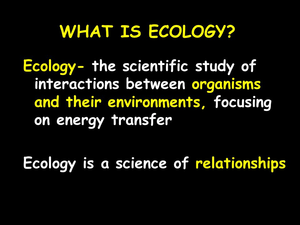 WHAT IS ECOLOGY Ecology- the scientific study of interactions between organisms and their environments, focusing on energy transfer.