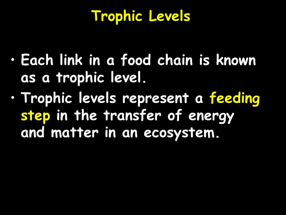 Trophic Levels Each link in a food chain is known as a trophic level.