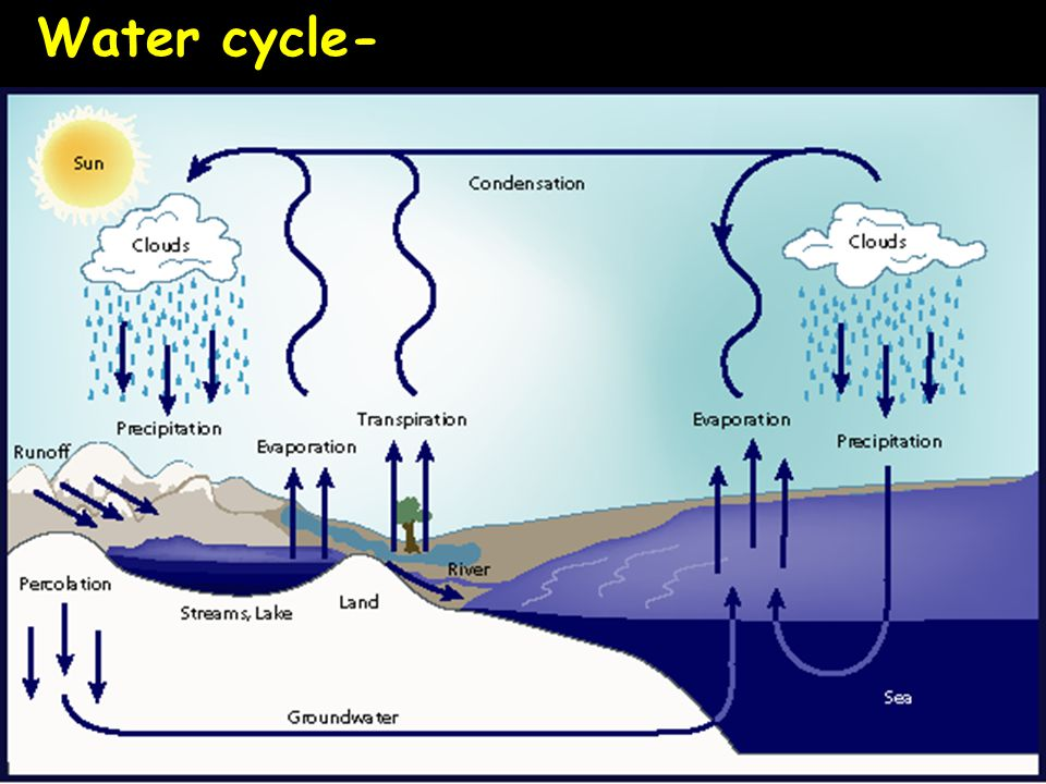 Water cycle-