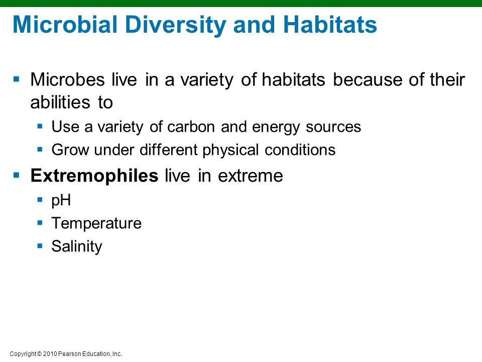 Microbial Diversity and Habitats