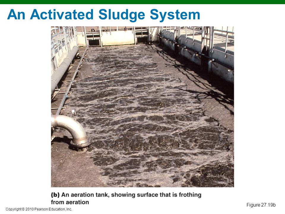 An Activated Sludge System