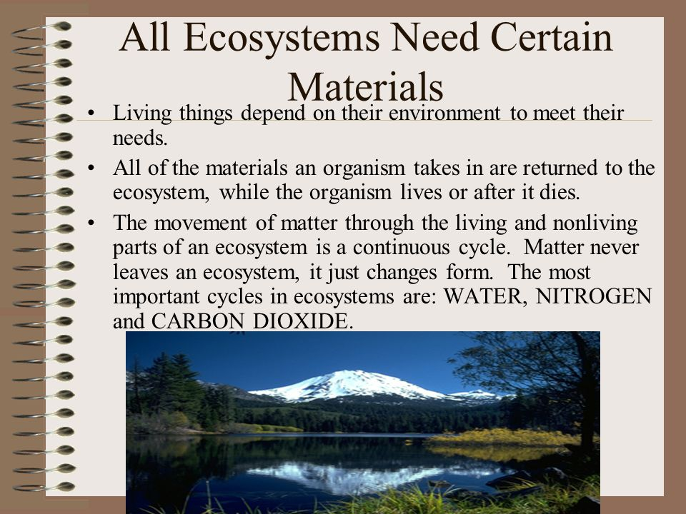 All Ecosystems Need Certain Materials