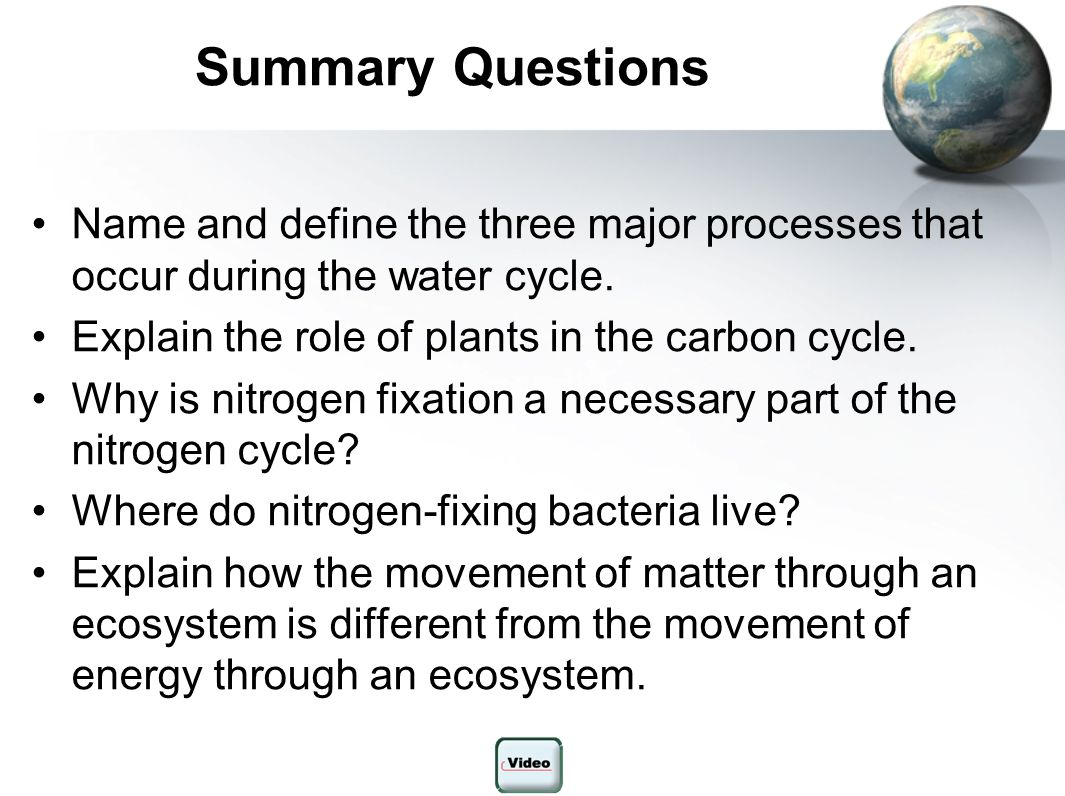 Summary Questions Name and define the three major processes that occur during the water cycle. Explain the role of plants in the carbon cycle.
