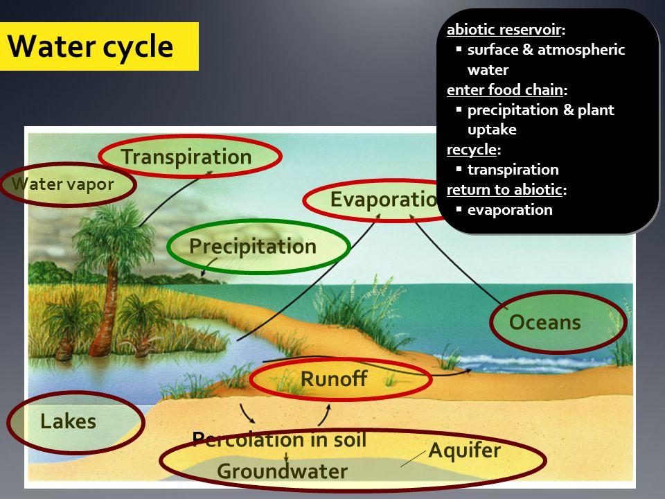 Water cycle Solar energy Transpiration Evaporation Precipitation