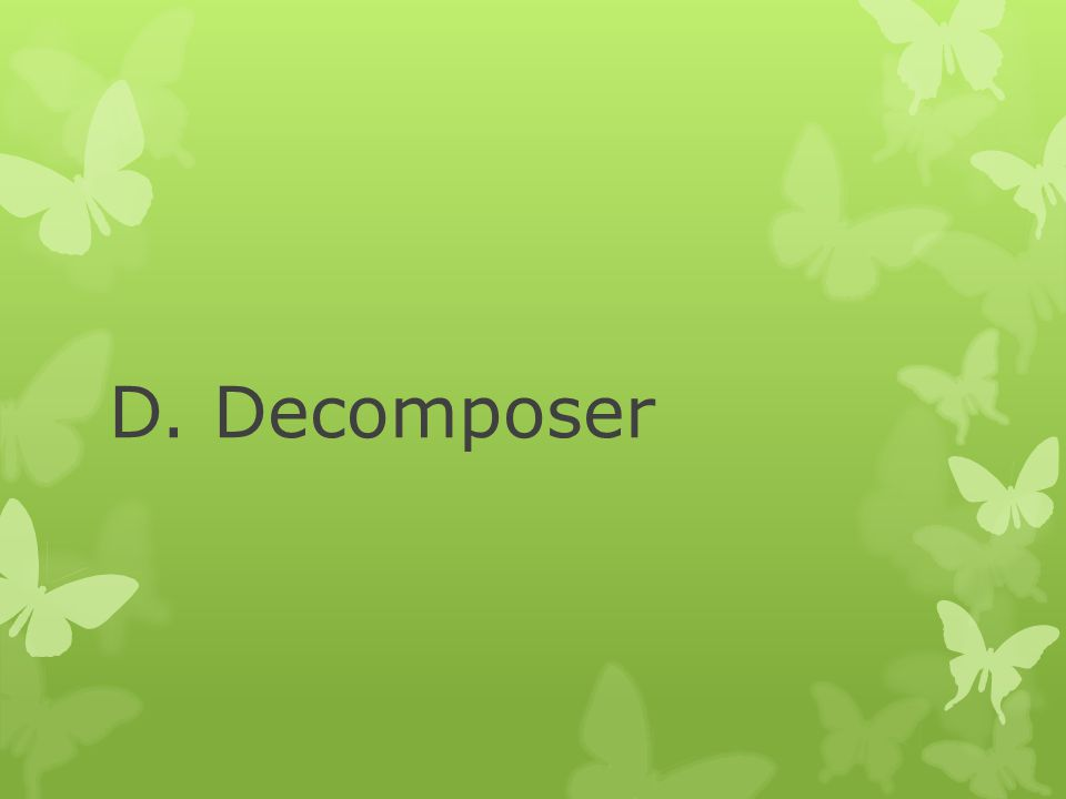D. Decomposer
