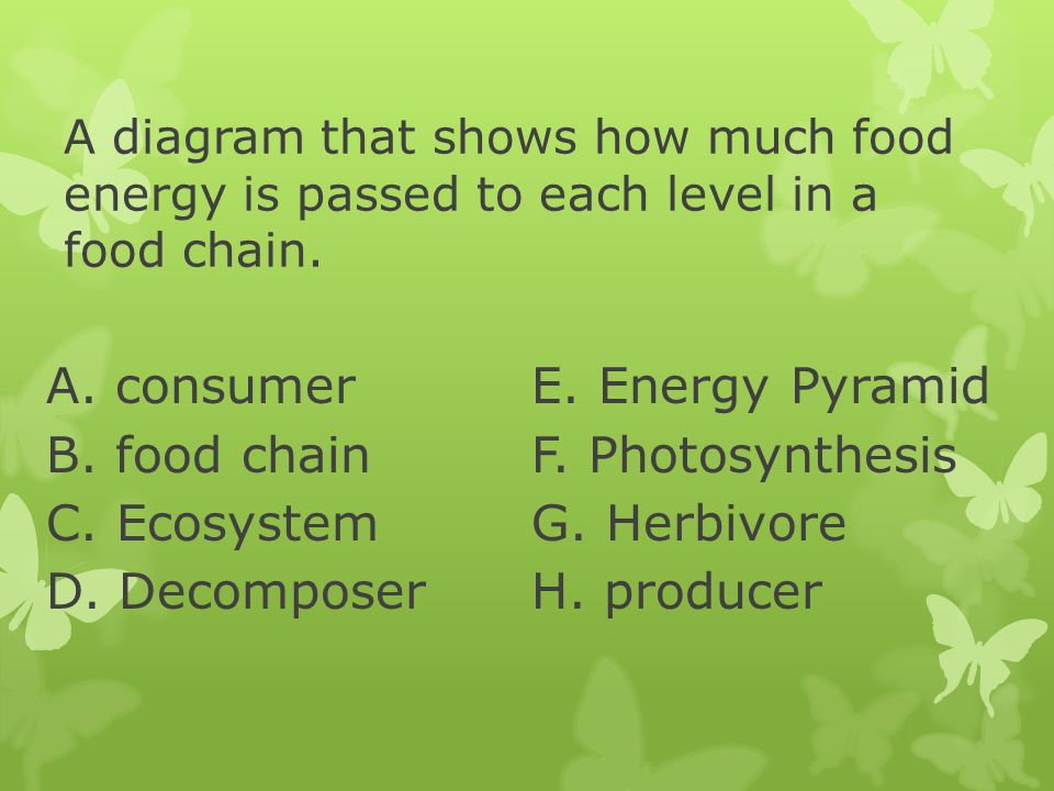 A. consumer E. Energy Pyramid B. food chain F. Photosynthesis