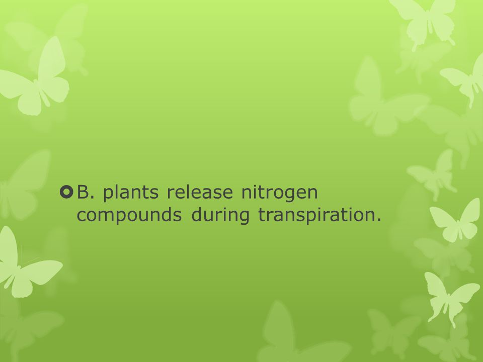 B. plants release nitrogen compounds during transpiration.