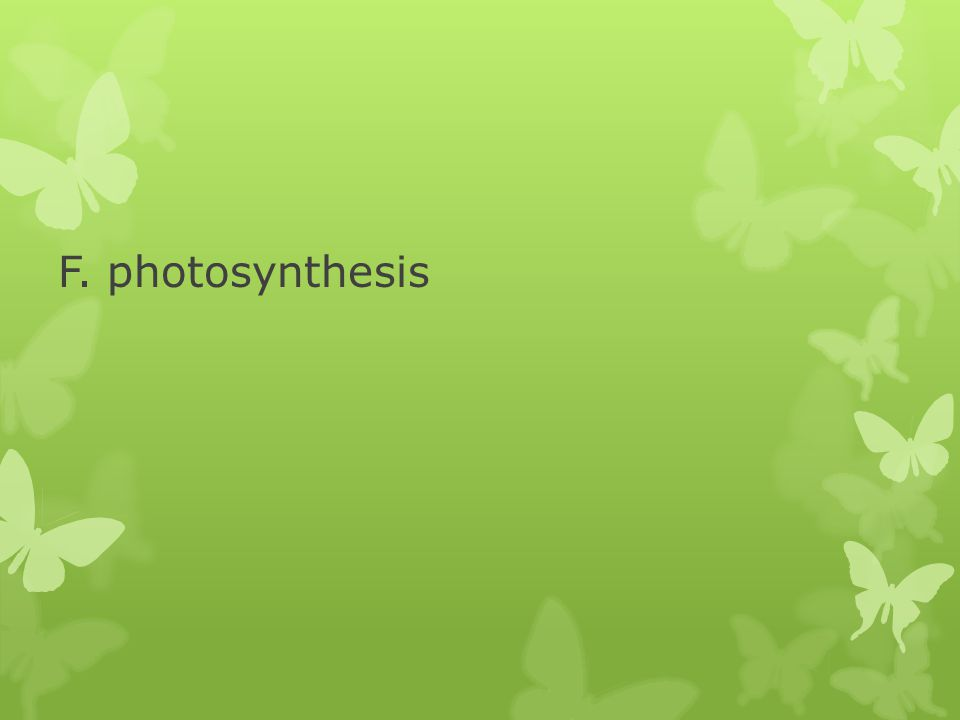 F. photosynthesis