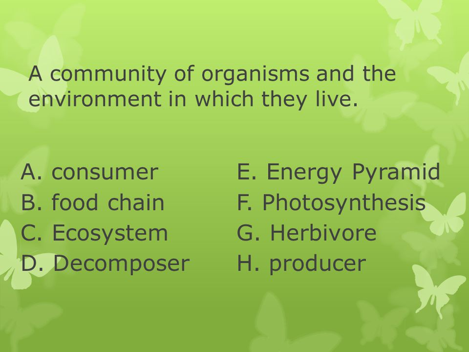 A community of organisms and the environment in which they live.