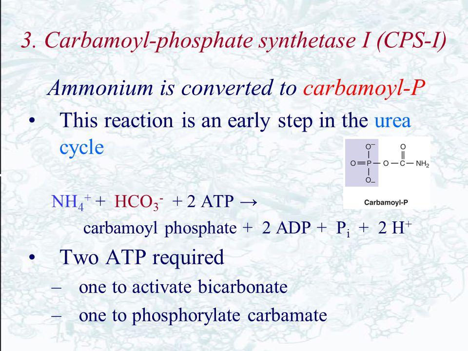 3. Carbamoyl-phosphate synthetase I (CPS-I)