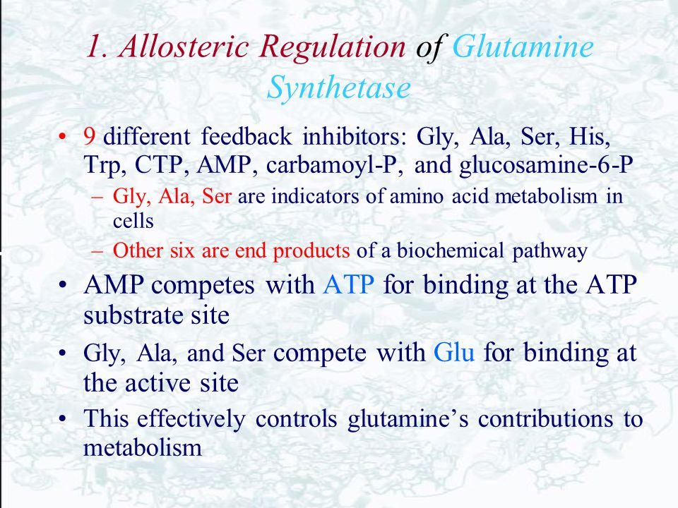 1. Allosteric Regulation of Glutamine Synthetase