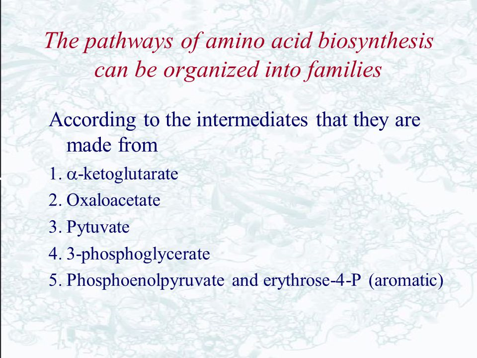 The pathways of amino acid biosynthesis can be organized into families