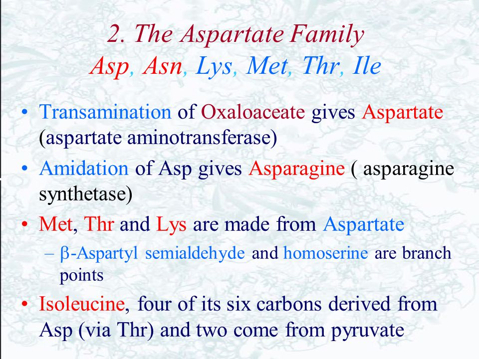 2. The Aspartate Family Asp, Asn, Lys, Met, Thr, Ile