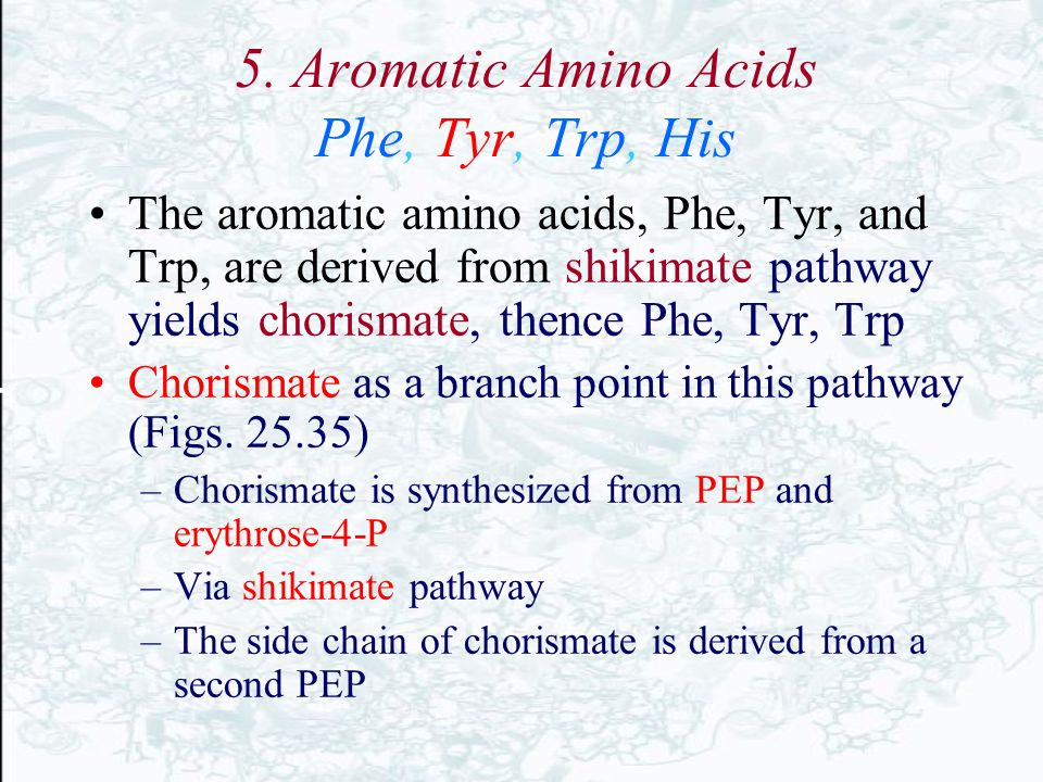 5. Aromatic Amino Acids Phe, Tyr, Trp, His