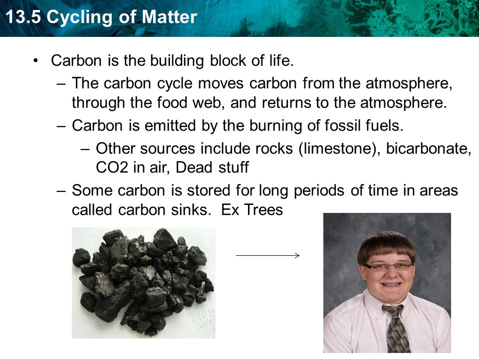 Carbon is the building block of life.