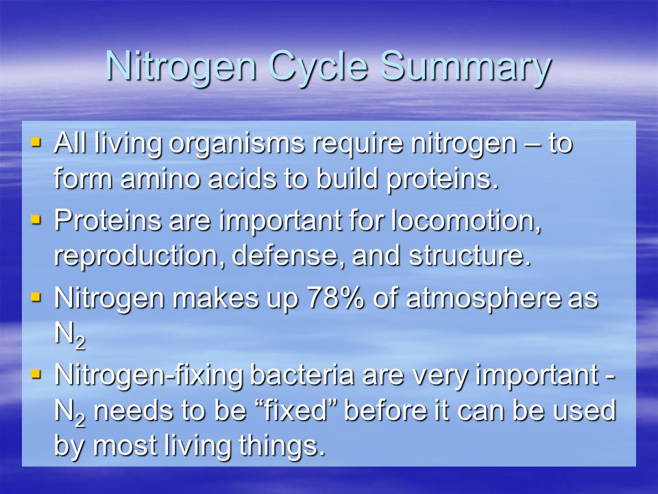 Nitrogen Cycle Summary