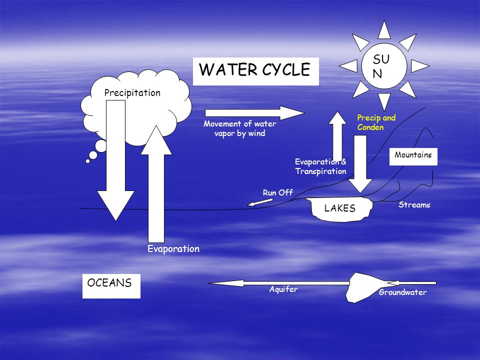 Movement of water vapor by wind