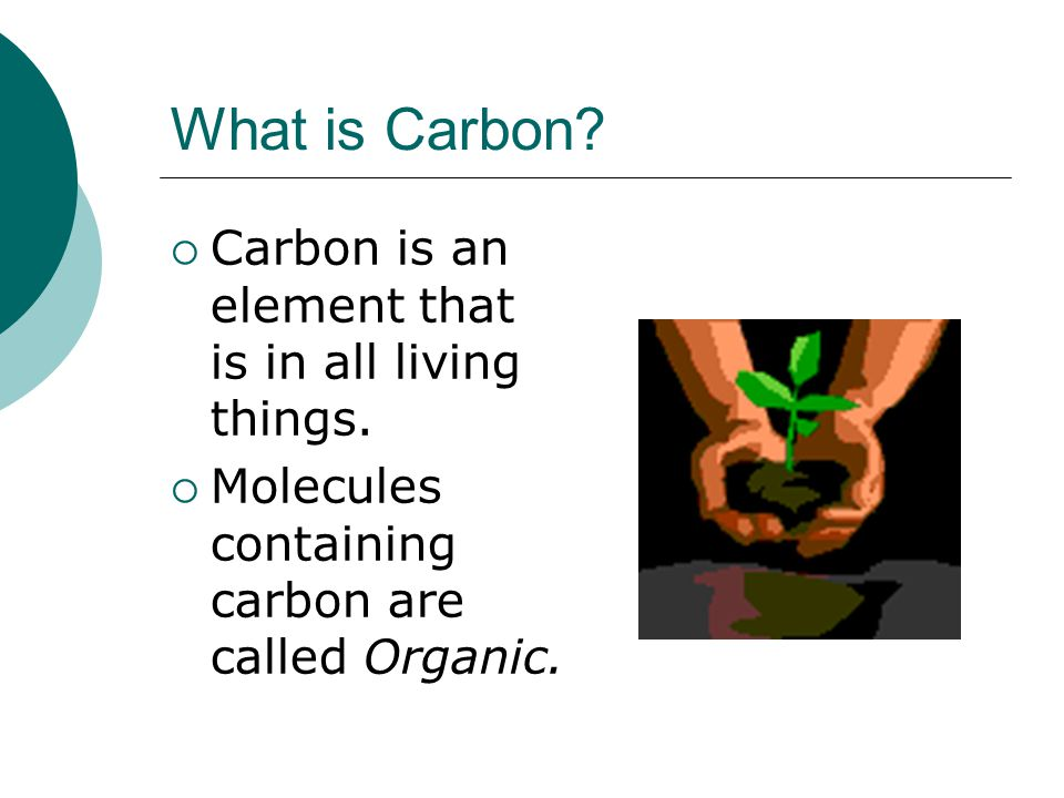 Define carbon dating in Melbourne