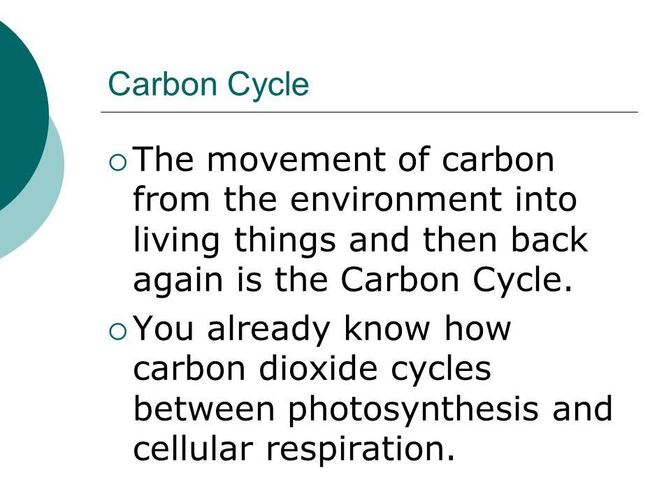 Carbon Cycle The movement of carbon from the environment into living things and then back again is the Carbon Cycle.