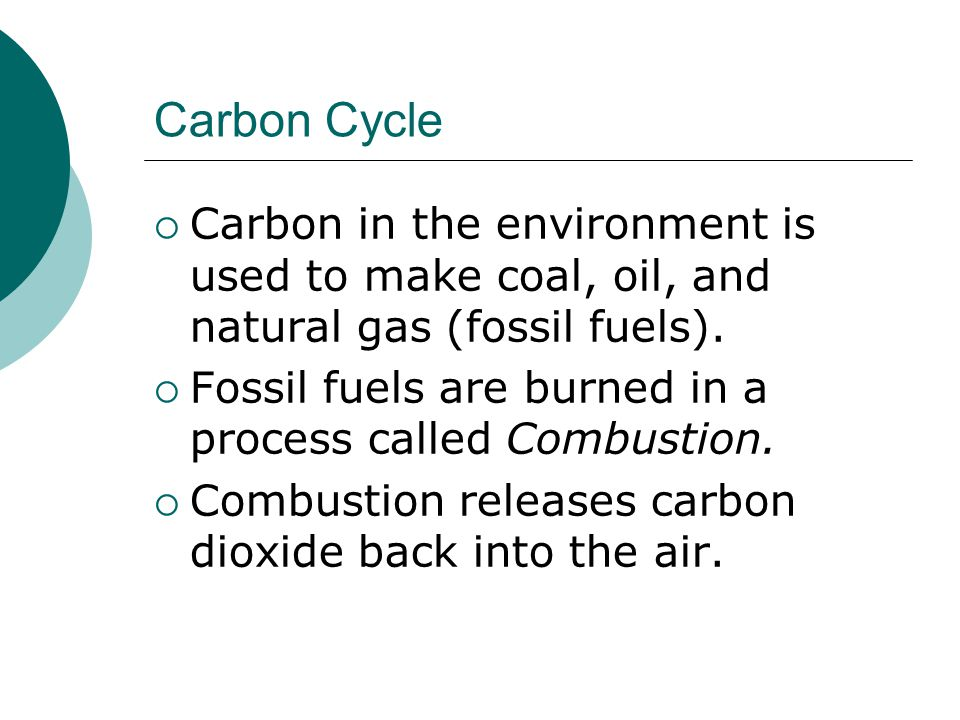 Carbon Cycle Carbon in the environment is used to make coal, oil, and natural gas (fossil fuels).