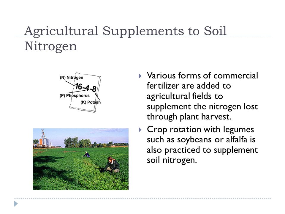 Agricultural Supplements to Soil Nitrogen