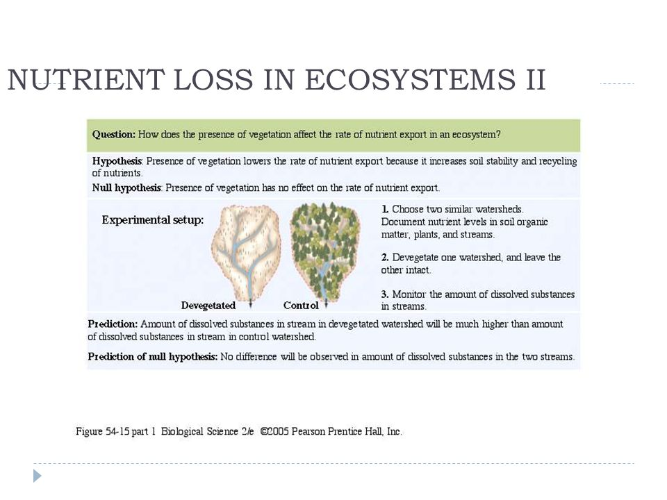 NUTRIENT LOSS IN ECOSYSTEMS II