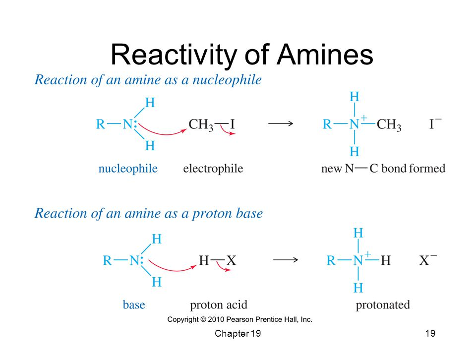 Reactivity of Amines Chapter 19