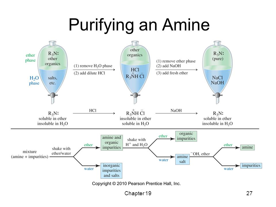 Purifying an Amine Chapter 19