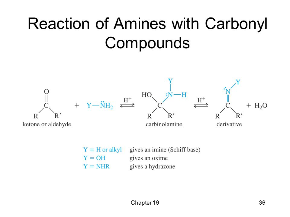 Reaction of Amines with Carbonyl Compounds