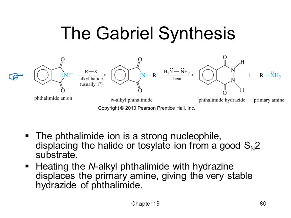 The Gabriel Synthesis The phthalimide ion is a strong nucleophile, displacing the halide or tosylate ion from a good SN2 substrate.