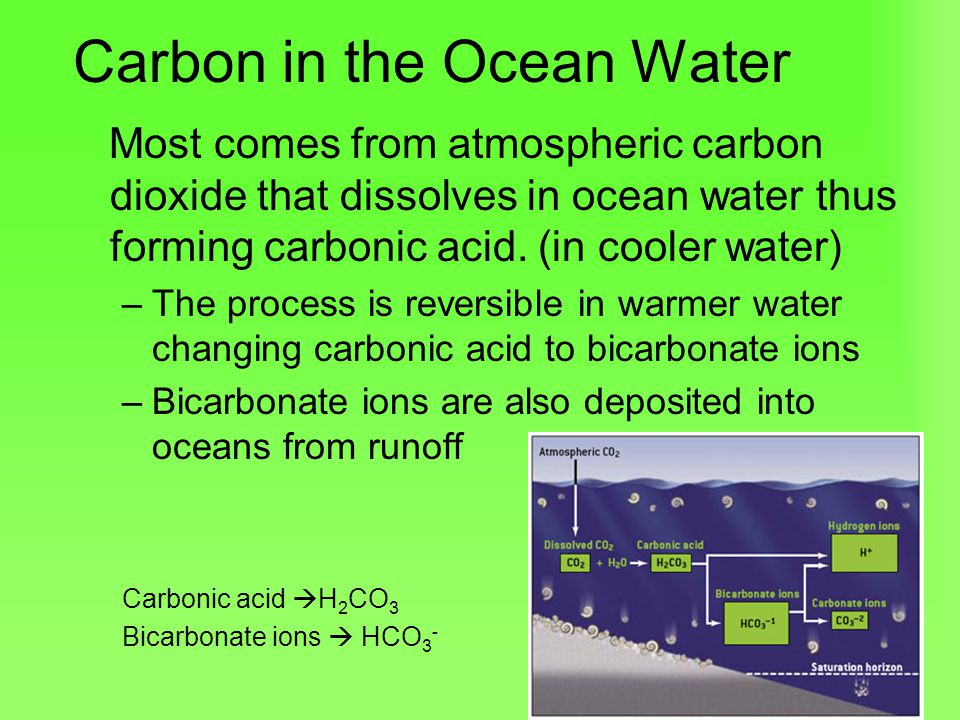 Carbon in the Ocean Water
