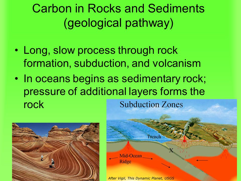 Carbon in Rocks and Sediments (geological pathway)