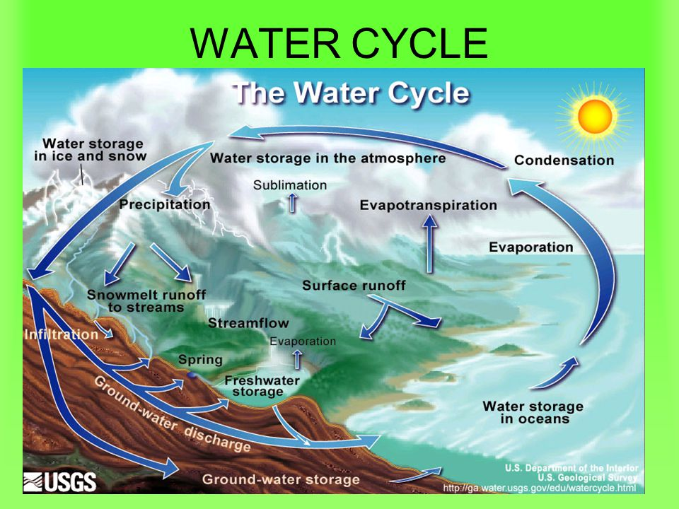 WATER CYCLE This is a biogeochemical cycle….with no beginning or end.