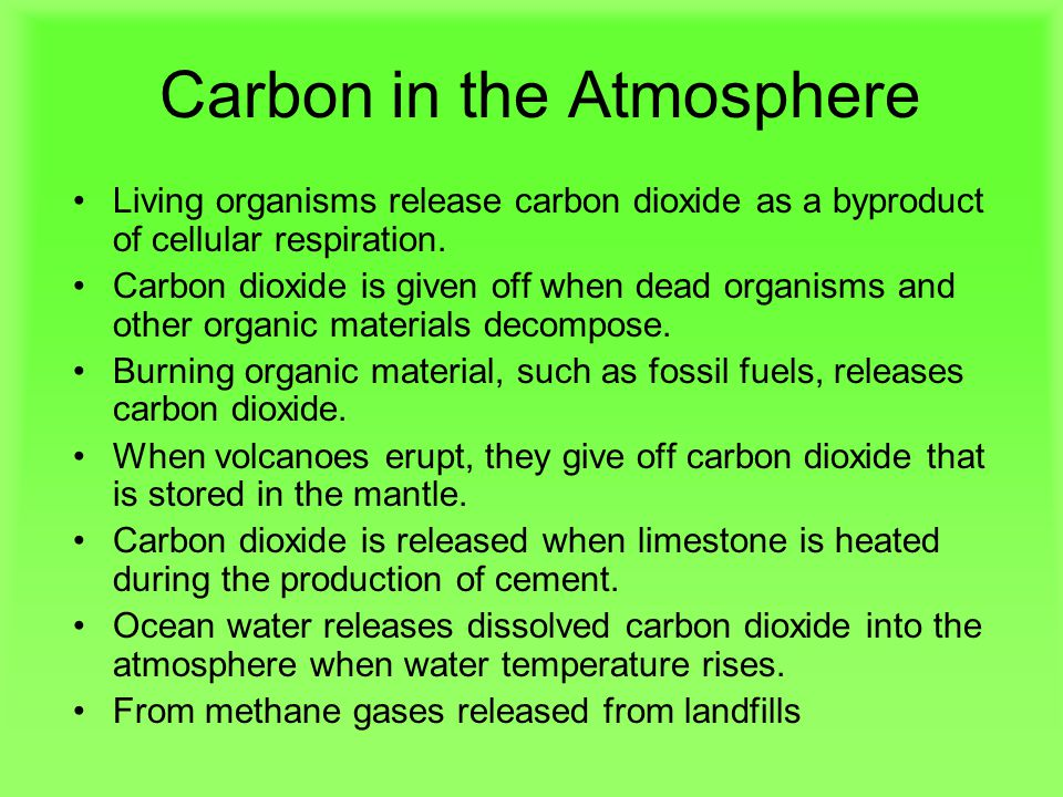 Carbon in the Atmosphere