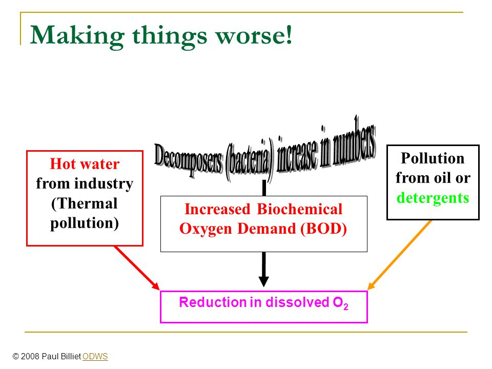 Making things worse! Pollution from oil or detergents