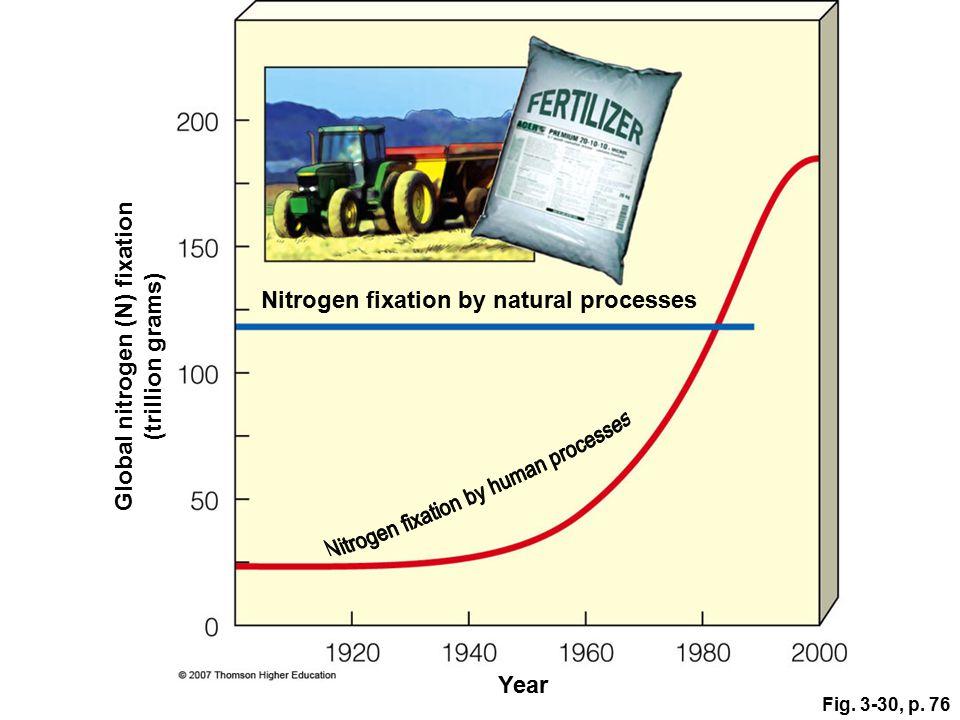 Global nitrogen (N) fixation
