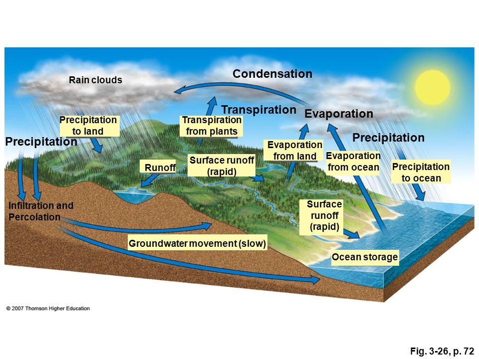 Condensation Transpiration Evaporation Precipitation Precipitation