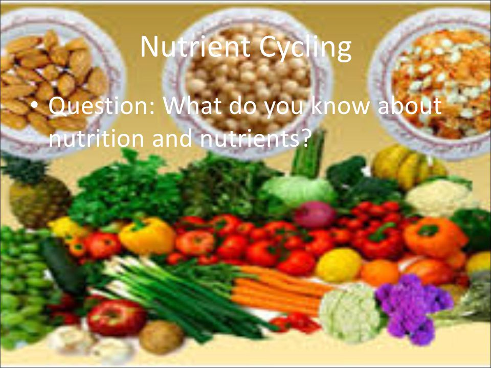 Nutrient Cycling Question: What do you know about nutrition and nutrients