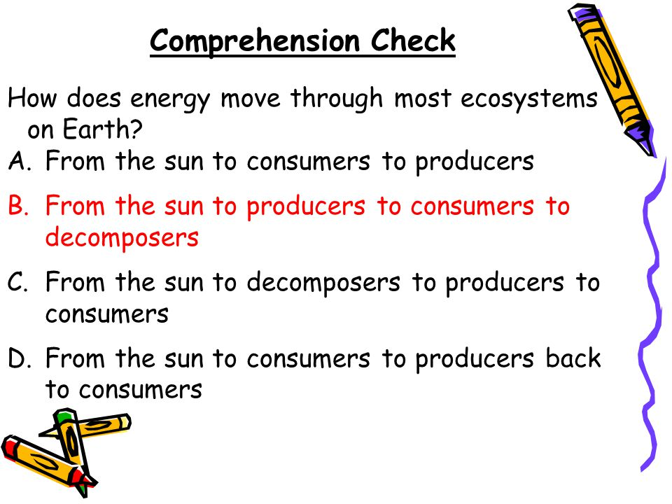 Comprehension Check How does energy move through most ecosystems on Earth From the sun to consumers to producers.