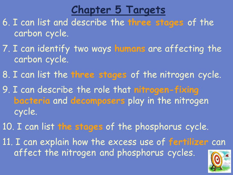 Chapter 5 Targets 6. I can list and describe the three stages of the carbon cycle. 7. I can identify two ways humans are affecting the carbon cycle.