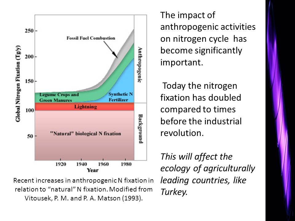 The impact of anthropogenic activities on nitrogen cycle has become significantly important.