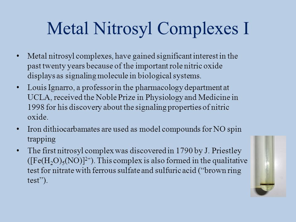 Metal Nitrosyl Complexes I
