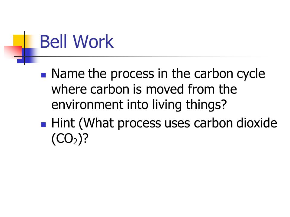 Bell Work Name the process in the carbon cycle where carbon is moved from the environment into living things